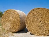 Rolling Haystack. Apulia. — Stock Photo