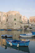 Landscape view of Giovinazzo. Apulia. — Foto Stock
