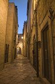 Alley by night. Giovinazzo. Apulia. — Stock Photo