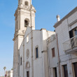 Stock Photo: Moldi Bari Church. Apulia.