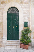 Green wooden frontdoor. — Stock Photo