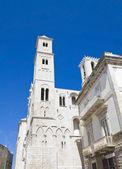 Catedral de giovinazzo. puglia. — Foto Stock