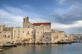 Giovinazzo Cathedral. Apulia. — ストック写真