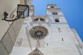 Altamura Cathedral. Apulia. — Stock Photo
