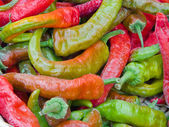 Red green peppers. — Stock Photo