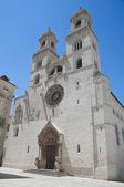 Altamura Cathedral. Apulia. — Stock Photo
