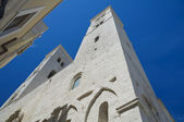 St. Corrado Dome. Molfetta. Apulia. — Stock Photo