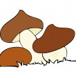 Stock Vector: Edible mushrooms.