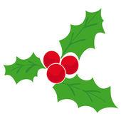 Mistletoe. — Stock Vector