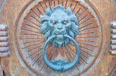 Lion Head Doorknocker. — 图库照片