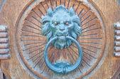 Doorknocker głowa lwa. — Zdjęcie stockowe