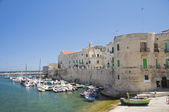 Panoramic view of Giovinazzo. Apulia. — Foto Stock