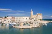 Cathedral of the sea. Trani. Apulia. — Stock Photo