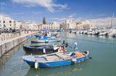 Boats moored in port. Trani. Apulia. — Stock Photo