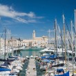 Panoramic view of Trani touristic port. Apulia. — Foto de Stock