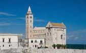 Cathedral on the sea. Trani. Apulia. — Stock Photo