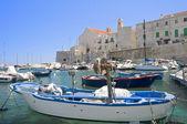 Panoramic view of Giovinazzo. Apulia. — Stock Photo