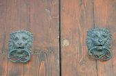 Lion Head Doorknocker. — Stock Photo