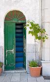 Wooden green door. — Stock Photo