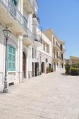 Muraglia. Bari. Apulia. — Stock Photo