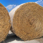 Rolling haystack. — Stock Photo