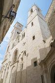 Catedral de giovinazzo. apulia. — Foto de Stock