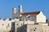 Giovinazzo Cathedral. Apulia. — Stock Photo