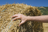 Hand on a rolling haystack. — Stock Photo