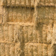 Stock Photo: Close up of yellow hay bales.