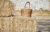 Wicker basket leaning on haistacks bales. — Stock Photo