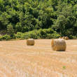 Rolling haystack in countryside. - Stock Photo