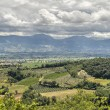 Royalty-Free Stock Photo: Landscape of Montefalco. Umbria.