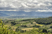 Landscape of Montefalco. Umbria. — Stock Photo