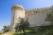 Lion Castle. Castiglione del Lago. Umbria. — Stock Photo