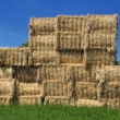 Stock Photo: Haystacks bales in countryside.