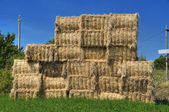 Haystacks bales in countryside. — Stock Photo