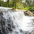 Stock Photo: Small waterfall in nature reserve