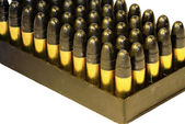 22 bullets in a tray — Stock Photo
