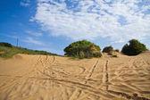 4x4 dunes — Stock Photo