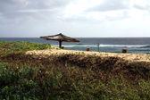 Beach in Mozambique — Stock Photo