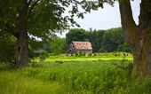 Ruinas y antiguo granero — Foto de Stock