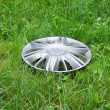 Stock Photo: View of lost hubcap on grass