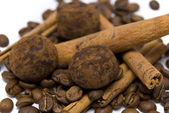 Coffee beans truffles and cinnamon — Stock Photo