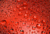 Red drops — Stock Photo