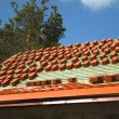 Red roof tiles — Stock Photo #3042246