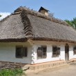 Old traditional ukrainian house — Stock Photo