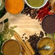 Spices - Foto de Stock  