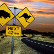 Australiroad sign — Stock Photo #3068593