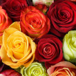Bouquet of roses — Stock Photo #3143623