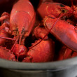 Boiled lobster — Stock Photo #3183510
